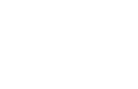 Executive Strategy Group white logo